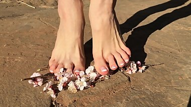 Hot young sexy teen crush sakura flowers with bare feet